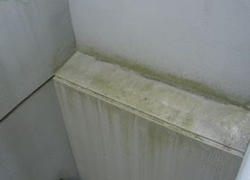塗膜の汚染